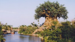 Discovery River Boats - Extinct Disney World Attractions