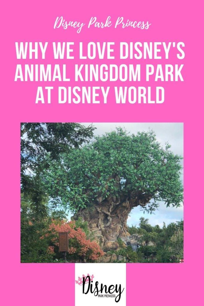 Why We Love Disney's Animal Kingdom Theme Park at Walt Disney World