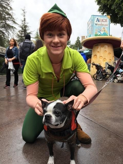 Pet Friendly Walt Disney World