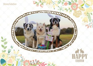 FotoJet Collage-easter dogs