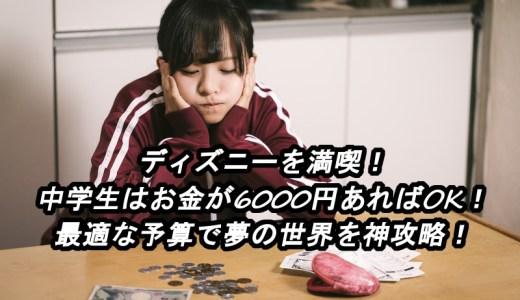 ディズニーを満喫!中学生はお金が6000円あればOK!最適な予算で夢の世界を神攻略!