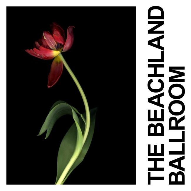 IDLES the Beachland Ballroom single art work