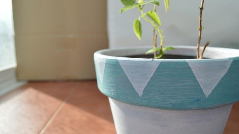 #elretopinterest: Pintar una maceta de terracota para un cactus