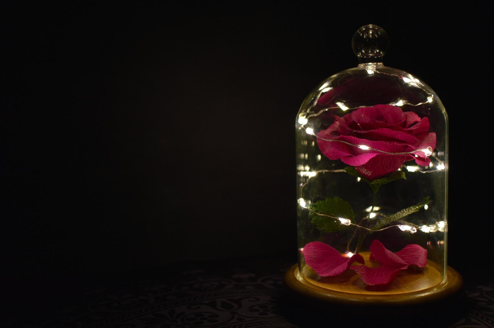La rosa encantada