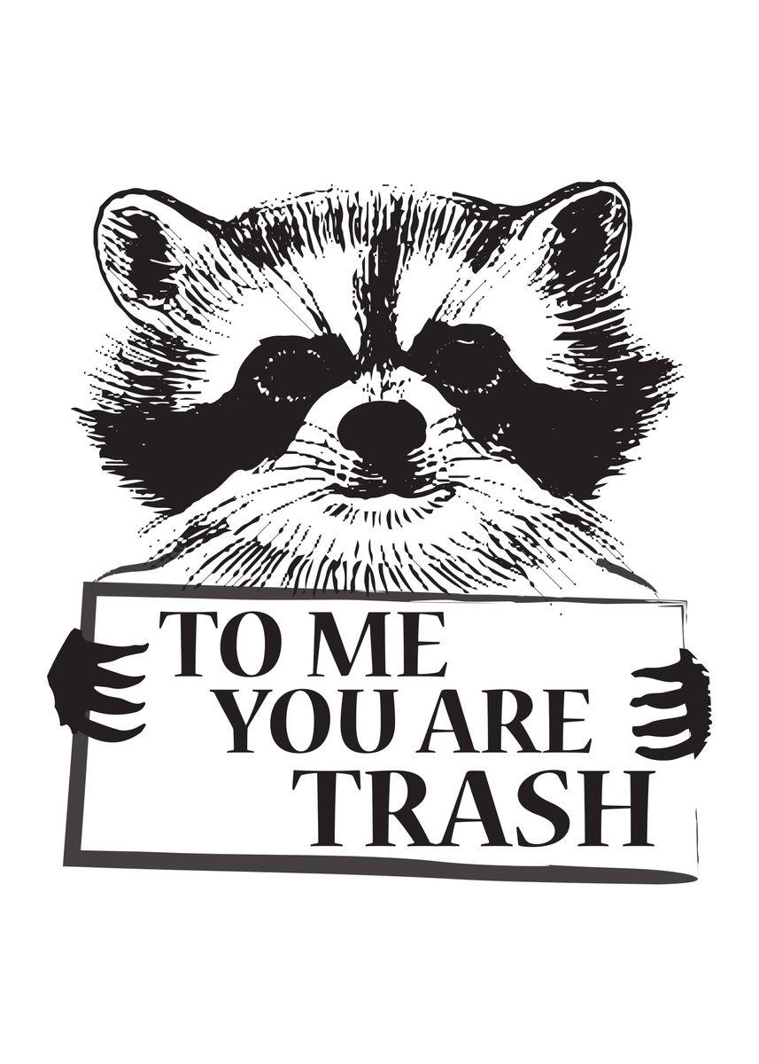 Trash Panda Cute Raccoon Animals Poster Print Metal Posters
