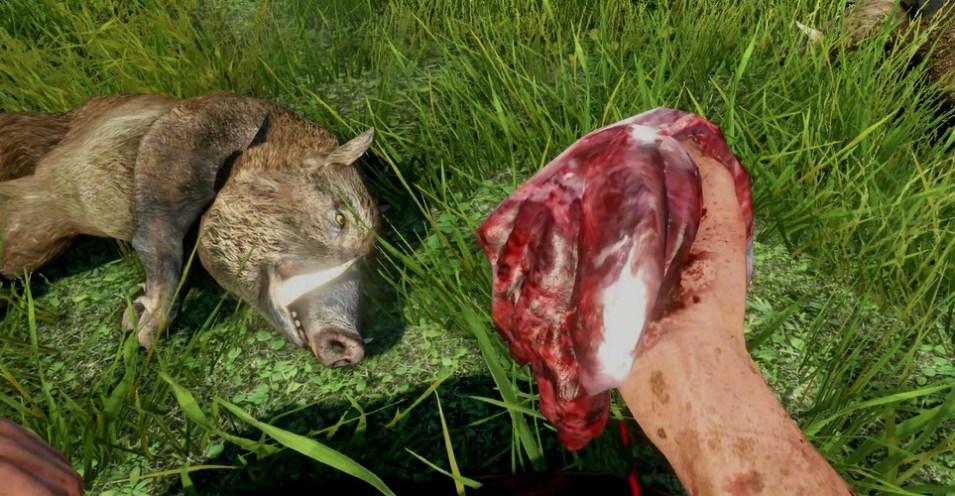 2156131-hunting_boar_far_cry_3