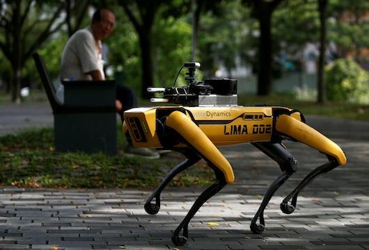 SPOT robot dog Singapore