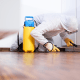 Spring Pest Control: How Can A Professional Pest Control Service Help