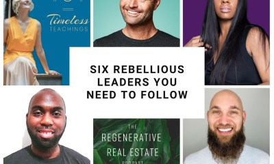 6 rebels you need to follow