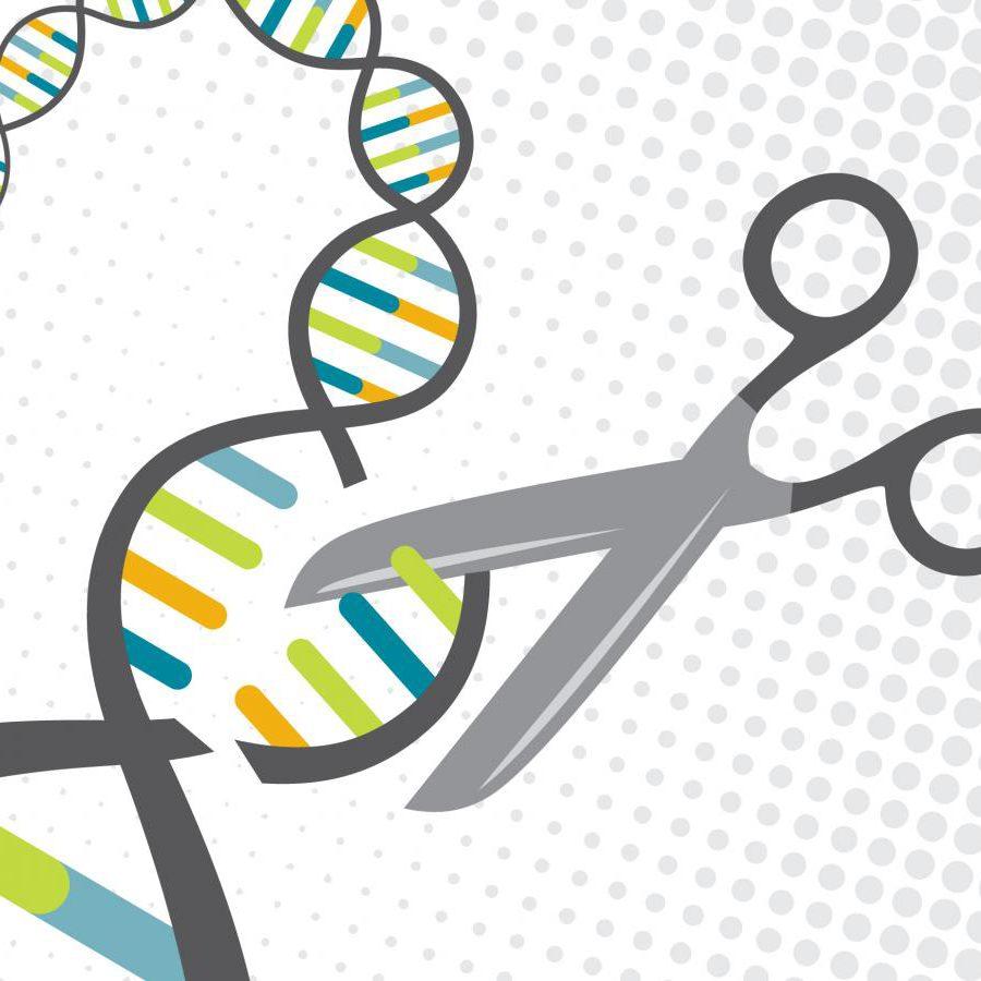 genetic editing with crispr