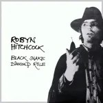 Robyn Hitchcock - Black Snake Diamond Role album cover