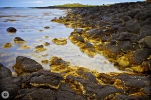 12 03 10 Port Fairy Lighthouse - rocky shoreline