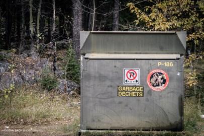 One of the many anti-bear bins