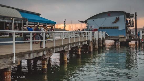 Watson's Bay pier