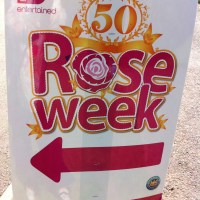 Belfast Rose Week