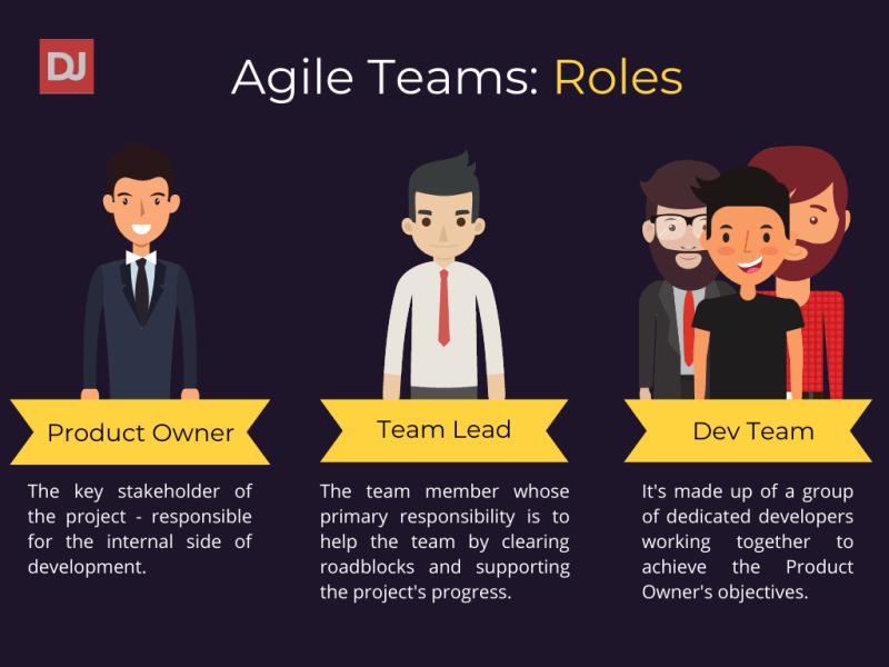 Roles in Agile teams graphs