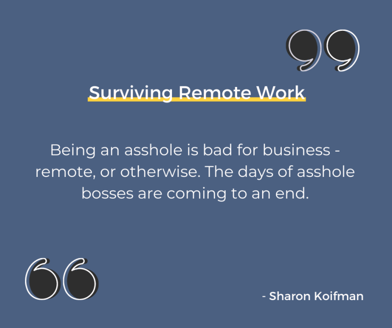 Surviving Remote Work quote from the book