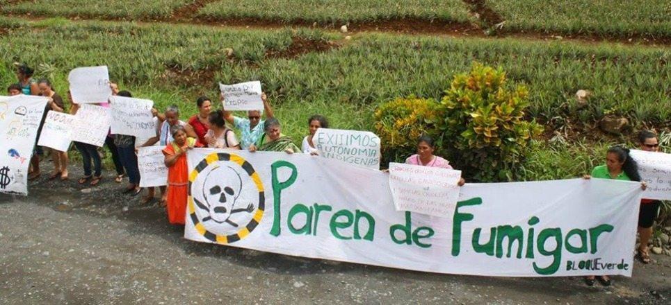 La lucha de Bloque Verde en una Costa Rica que dice ser ecológica