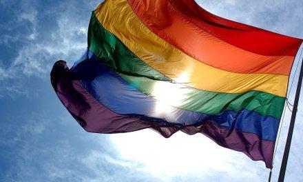 12 organizaciones que luchan por los derechos LGBTI en América Latina