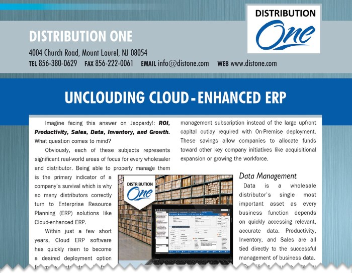 wholesale and distributor software