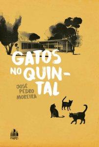 Gatos no Quintal