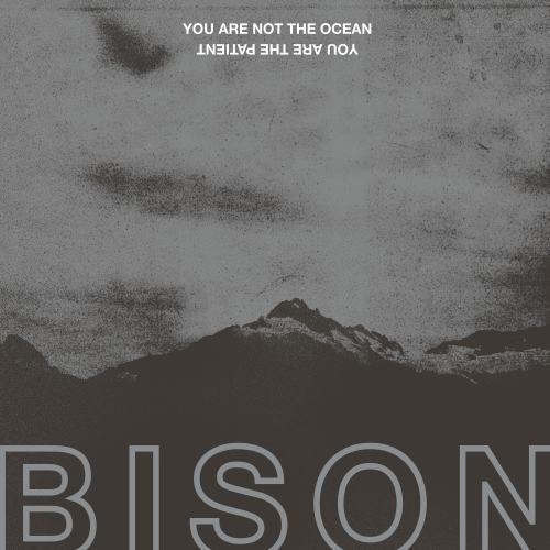 You Are Not The Ocean You Are The Patient - BISON
