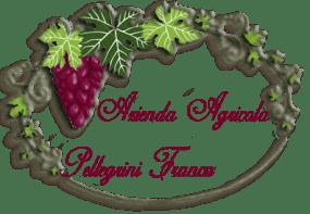 logo_francopellegrini