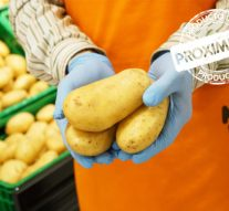 Patatas de proximidad, la nueva campaña de Mercadona en todas sus tiendas