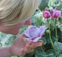 Estudio científico demuestra que oler la comida está relacionado con engordar