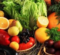 La UE reformará las reglas comunitarias sobre agricultura y etiquetado de productos ecológicos