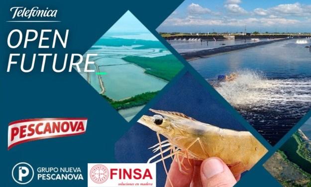 Telefónica Open Future_ recibe retos al emprendimiento de Grupo Nueva Pescanova y Finsa