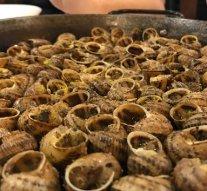 Los manjares gastronómicos de Lleida