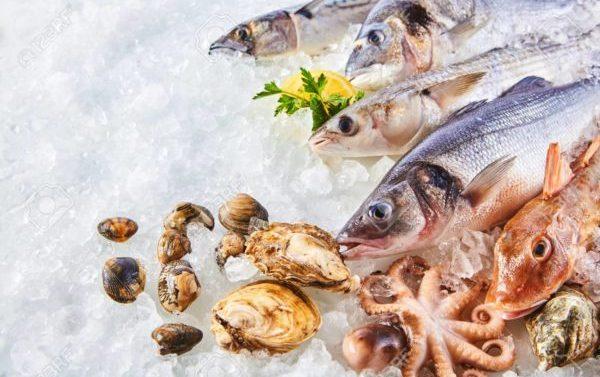 Expertos alertan sobre los riesgos de comer marisco crudo en verano