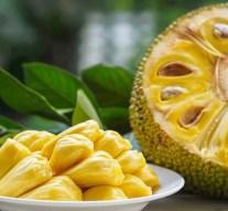 Jackfruit, una gigantesca fruta que podría sustituir la carne