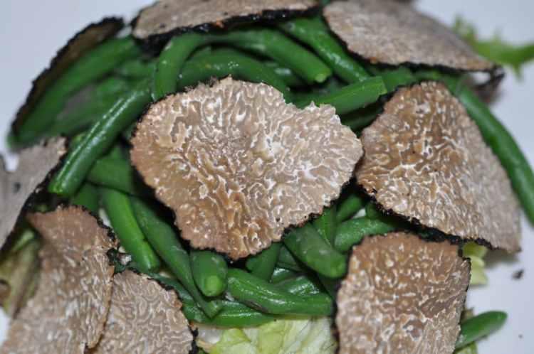 truffe été salade composée
