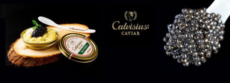dégustation caviar et champagne lyon