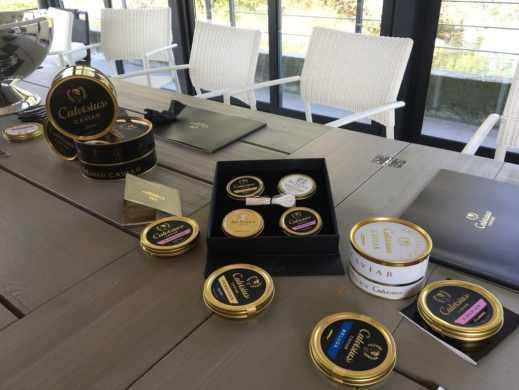 distrilux calvisano calvisius, voyage découverte du caviar