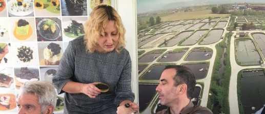 dégustation sur le site de production de caviar en italie, distrilux lyon, séminaire entreprise original, team building à létranger