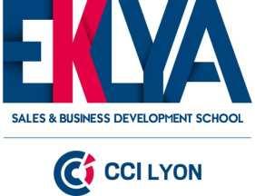 eklya business school, cci lyon