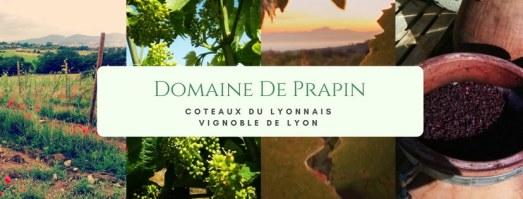 domaine de prapin coteaux lyonnais, vin caviar lyon, degustation caviar domaine vin