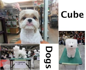 Cube Dogs in Japan