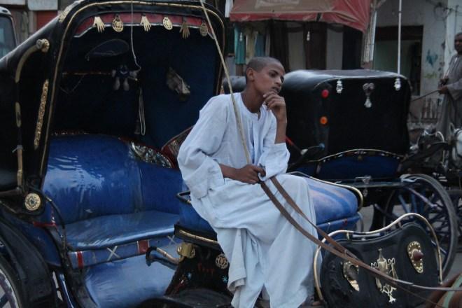Egypt calesh