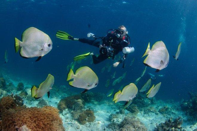 Brondbo foto dykker