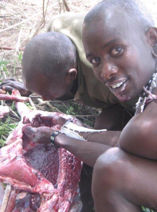 Om du ikke får drikke blod får de kanskje SE at maasaiene gjør det