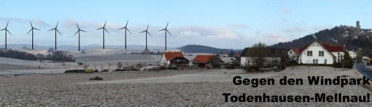 20130310-Gegen den Windpark Todenhausen-Mellnau