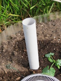 pipe to aid watering