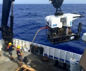 ROV Deep Discoverer (D2) being launched. Photo credit: Diva Amon