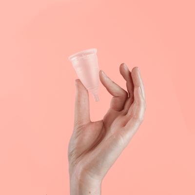 Hand holding Divacup Model