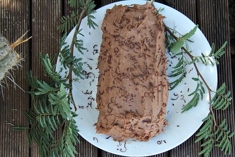 chocolate-yule-log