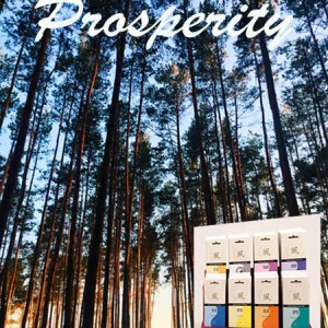 Prosperity Incenses Feng Shui